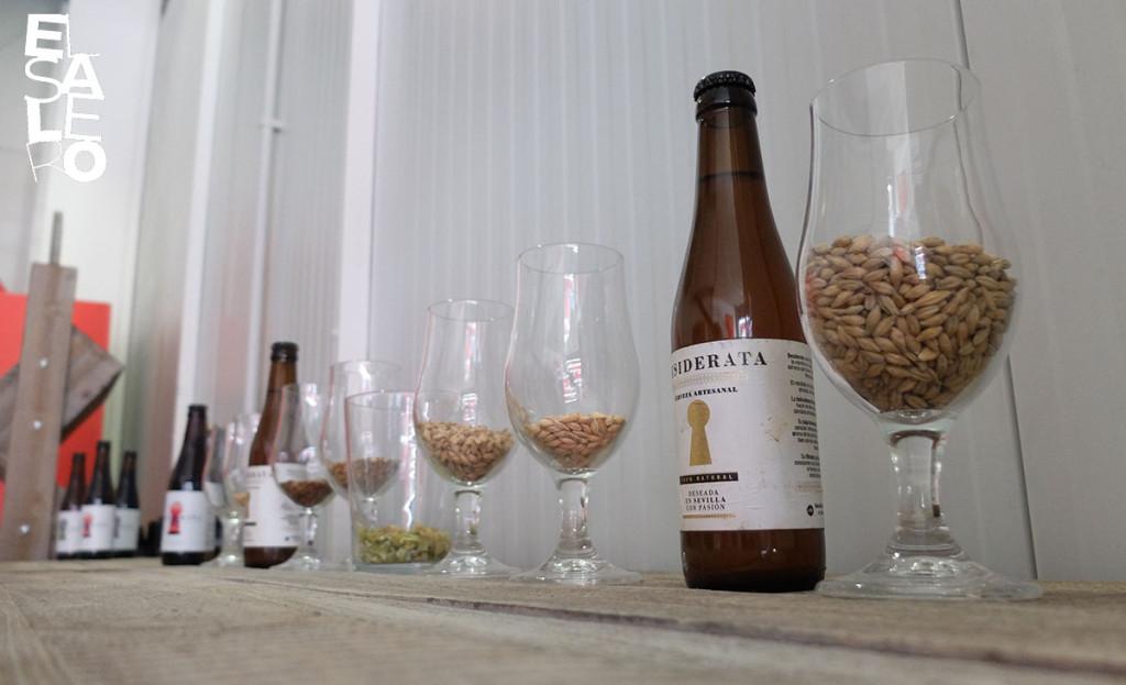 FX30_0769 CervezaDesiderata_Mairena QPV abr18